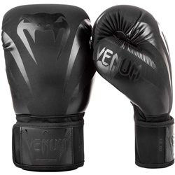Impact Boxing Gloves Black